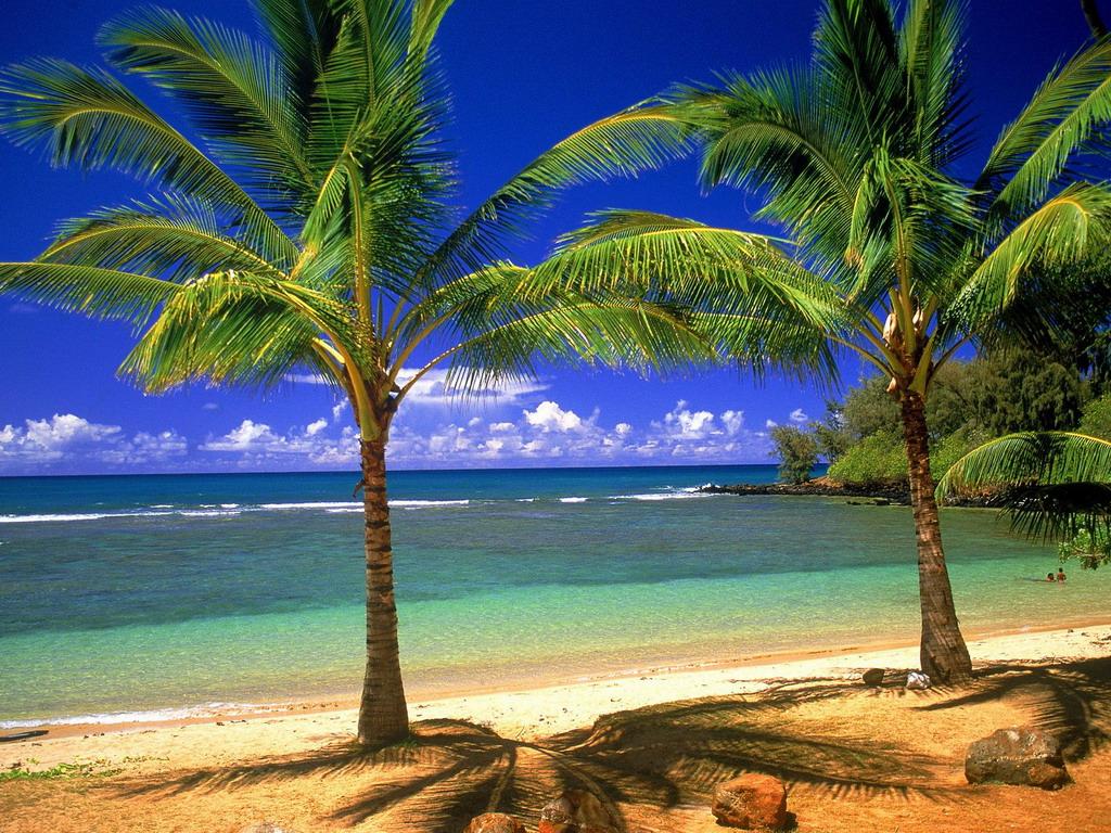 Annaritamaestra spiagge for Disegni di paesaggi di mare